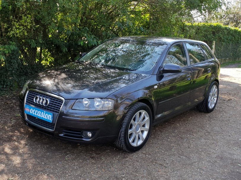 Audi A3 Sportback 1.9l Tdi 105 Ambition Luxe